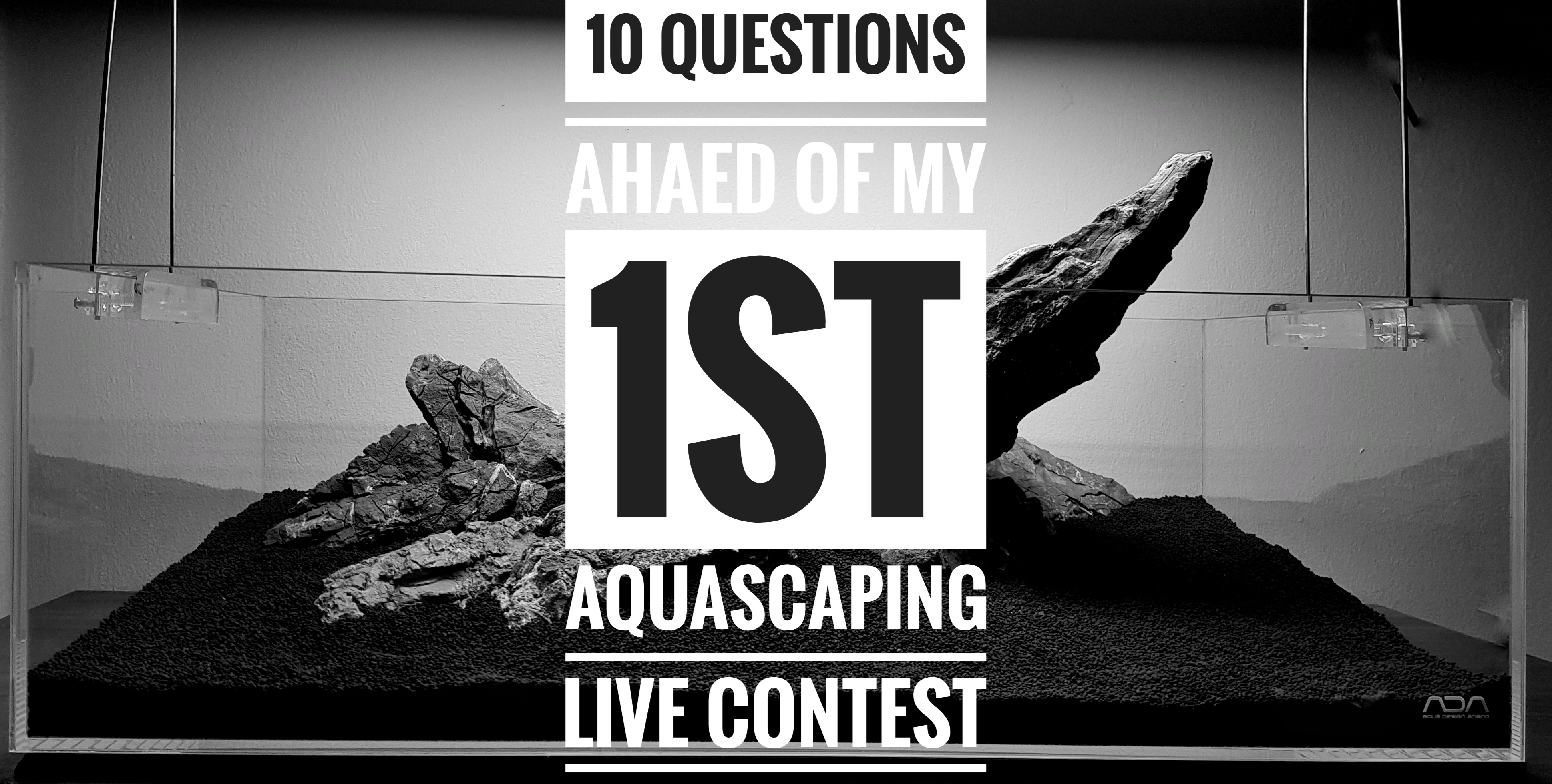 10 things you ask yourself before your first live aquascaping contest