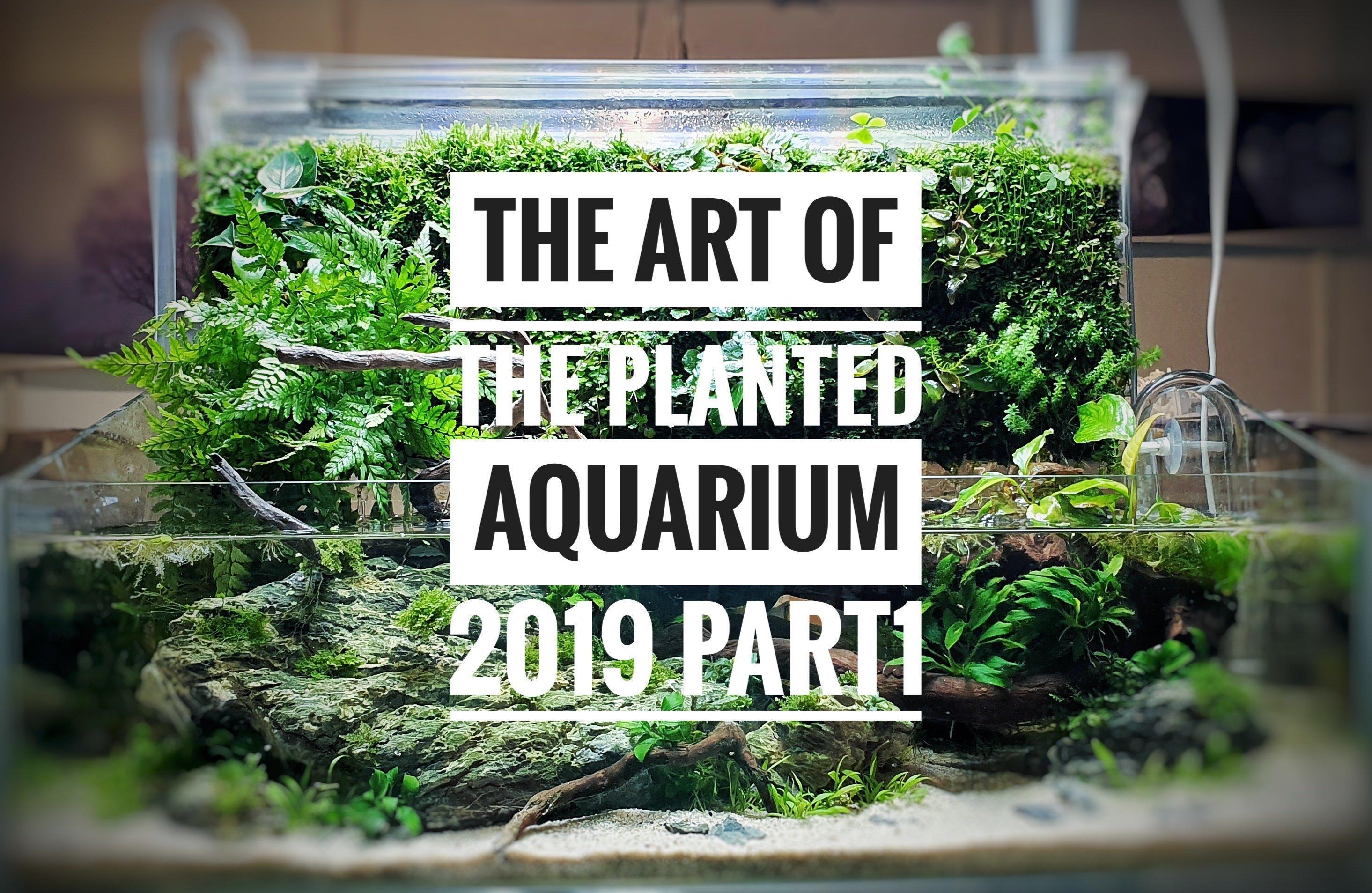 The Art of the Planted Aquarium 2019 – Erlebnisbericht (Part 1)